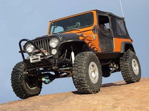 CJ TRAIL STINGER